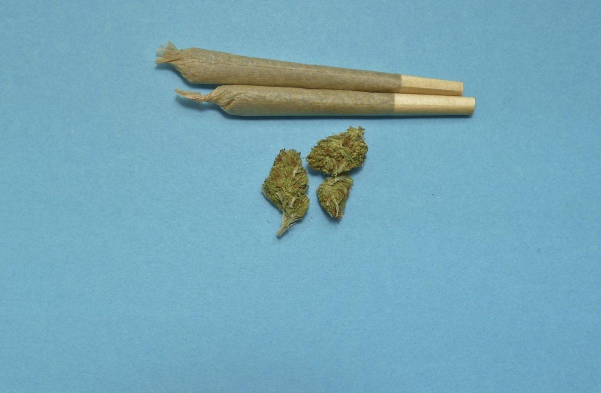 Marijuana impact dental health